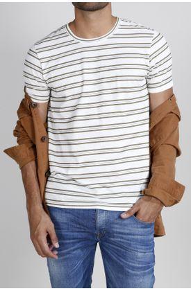 Tshirt-estampado-rayas-verdes-y-azules