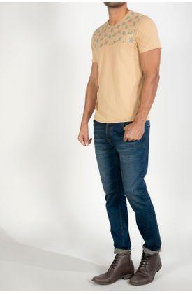 Tshirt-estampado-palmeras