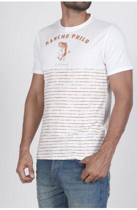 Tshirt-fondo-entero-y-rayas-