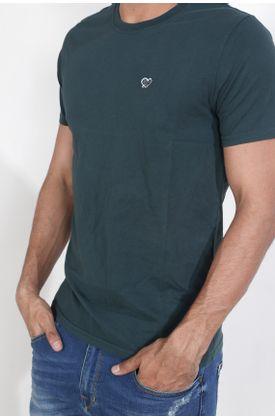 Tshirt-fondo-entero-
