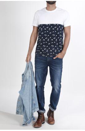 Tshirt-fondo-entero-y-palmeras
